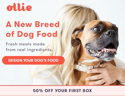 Ollie Dog Food Boxes